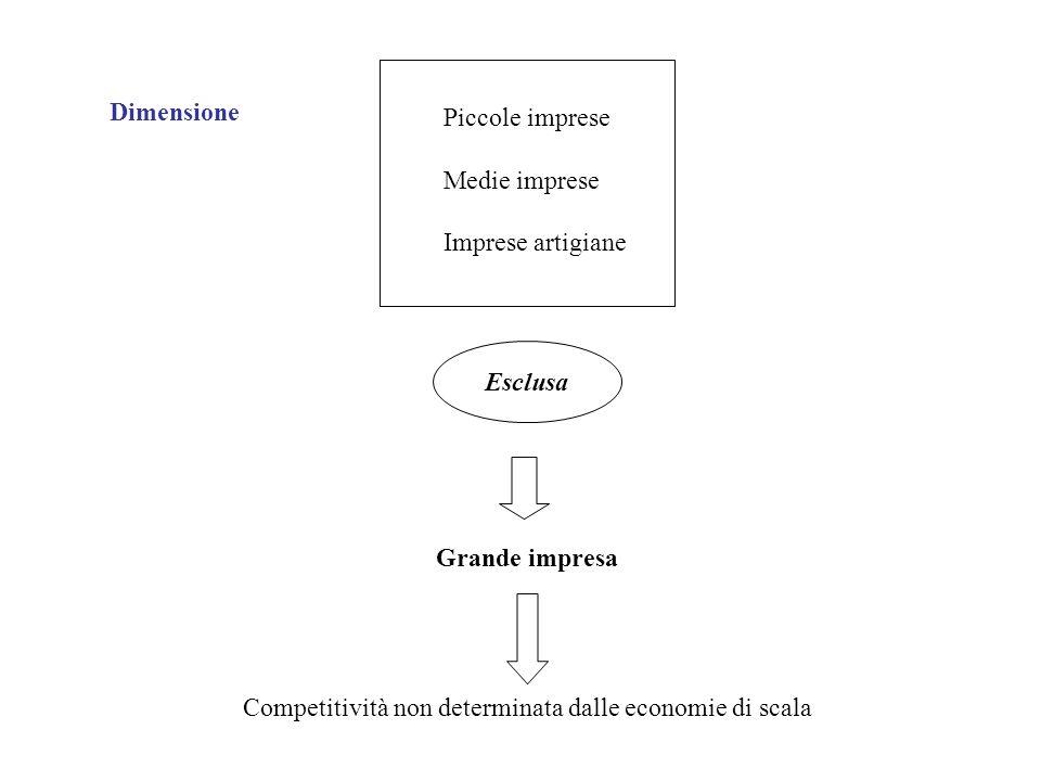 Grande impresa Competitività non determinata dalle economie di scala Piccole imprese Medie imprese Imprese artigiane Esclusa Dimensione