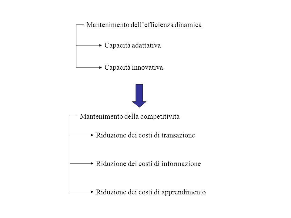 Mantenimento dellefficienza dinamica Capacità adattativa Capacità innovativa Mantenimento della competitività Riduzione dei costi di transazione Riduz