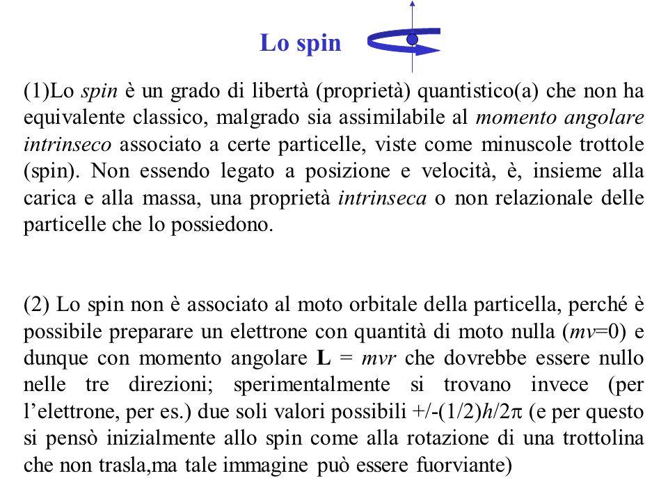 Lo spin (1)Lo spin è un grado di libertà (proprietà) quantistico(a) che non ha equivalente classico, malgrado sia assimilabile al momento angolare intrinseco associato a certe particelle, viste come minuscole trottole (spin).