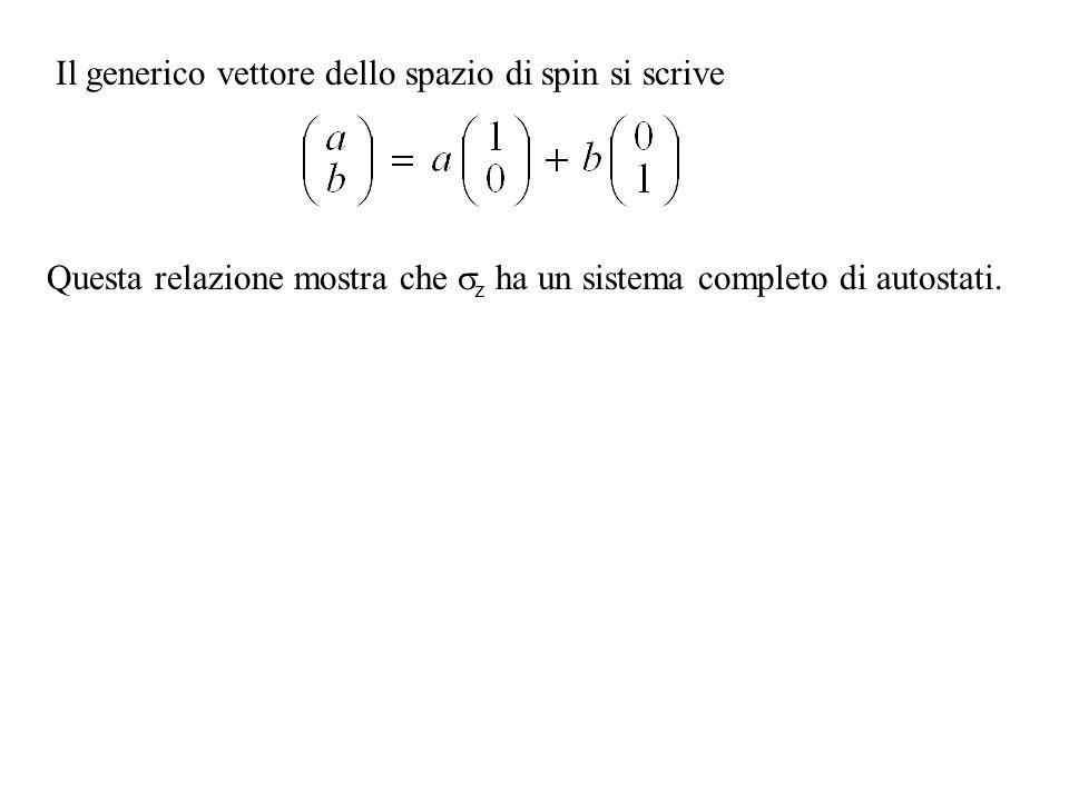 Il generico vettore dello spazio di spin si scrive Questa relazione mostra che z ha un sistema completo di autostati.