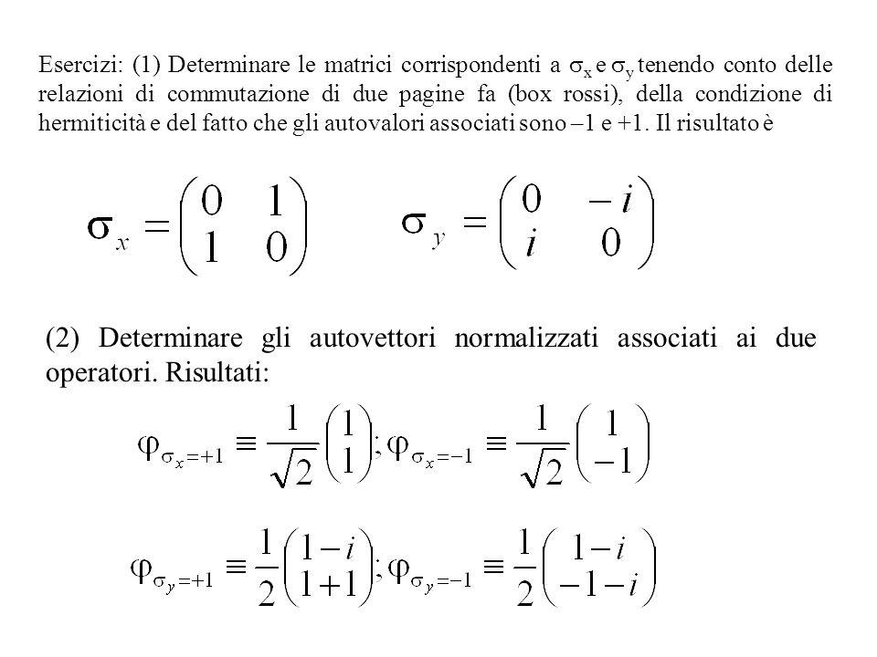 Esercizi: (1) Determinare le matrici corrispondenti a x e y tenendo conto delle relazioni di commutazione di due pagine fa (box rossi), della condizione di hermiticità e del fatto che gli autovalori associati sono –1 e +1.