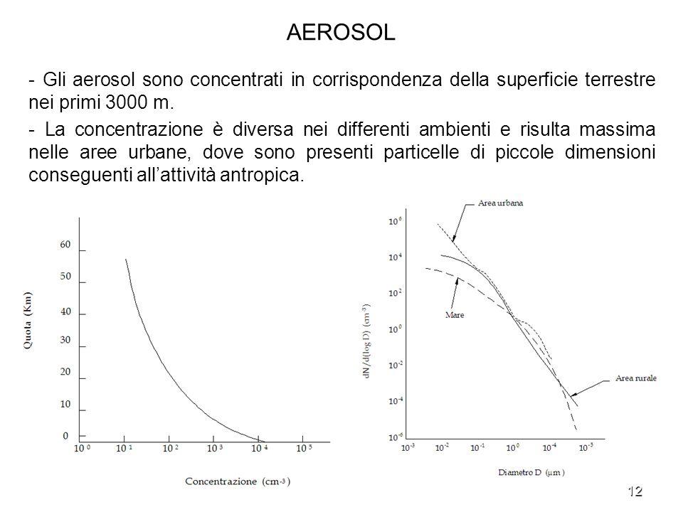 12 AEROSOL - Gli aerosol sono concentrati in corrispondenza della superficie terrestre nei primi 3000 m. - La concentrazione è diversa nei differenti