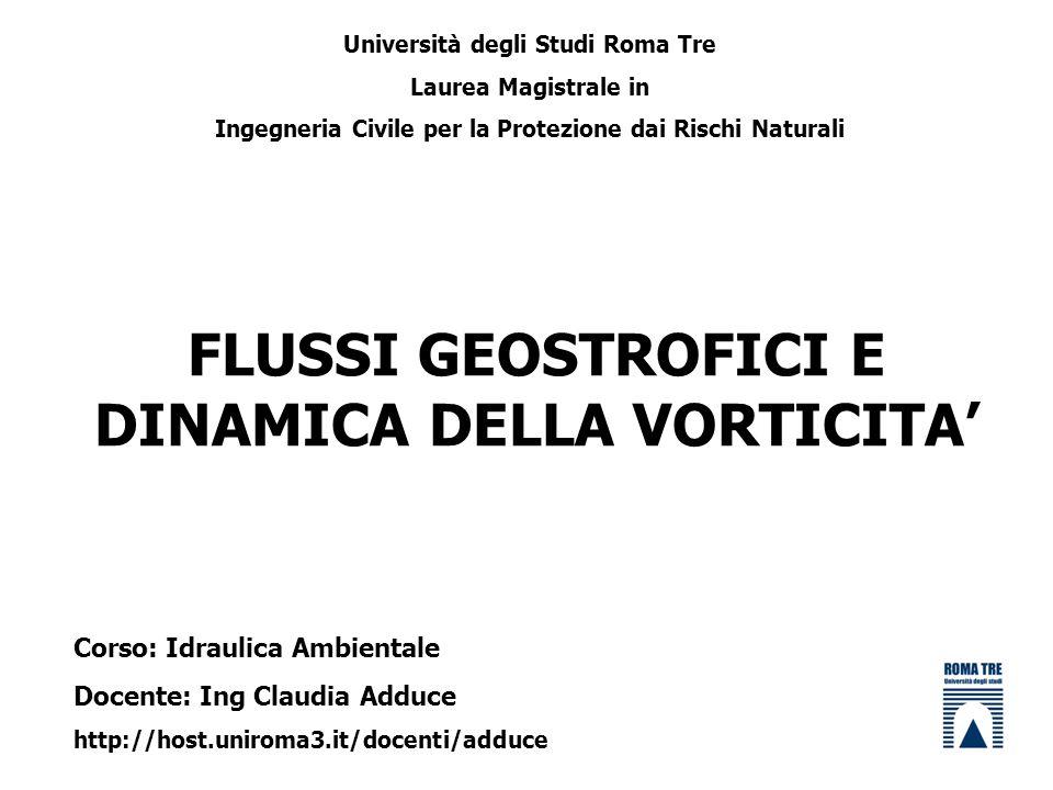 FLUSSI GEOSTROFICI E DINAMICA DELLA VORTICITA Università degli Studi Roma Tre Laurea Magistrale in Ingegneria Civile per la Protezione dai Rischi Natu