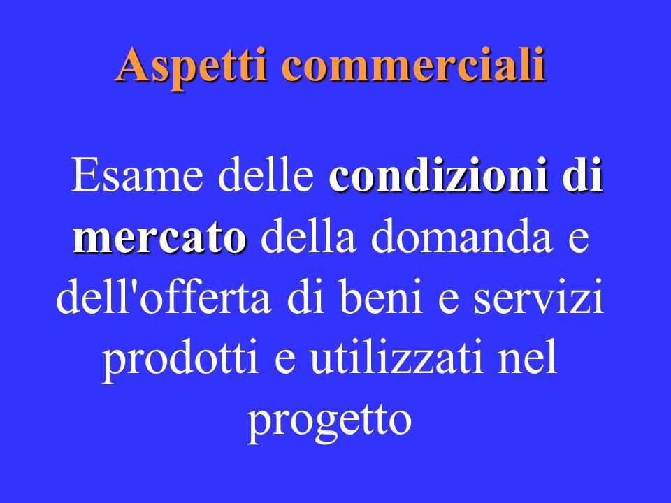 Aspetti commerciali condizioni di mercato Esame delle condizioni di mercato della domanda e dell offerta di beni e servizi prodotti e utilizzati nel progetto