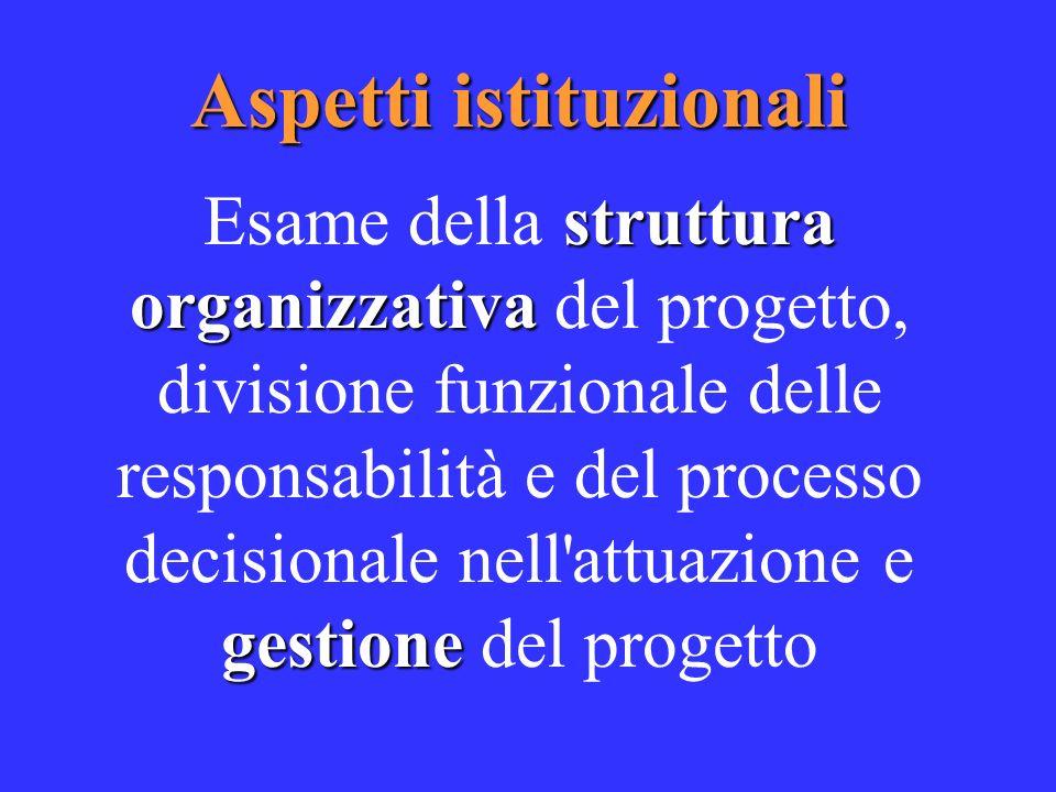 Aspetti istituzionali struttura organizzativa gestione Esame della struttura organizzativa del progetto, divisione funzionale delle responsabilità e del processo decisionale nell attuazione e gestione del progetto