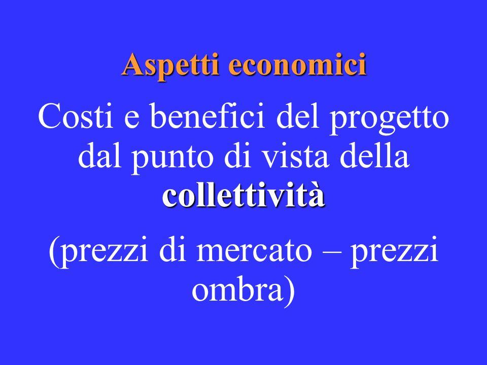 Aspetti economici collettività Costi e benefici del progetto dal punto di vista della collettività (prezzi di mercato – prezzi ombra)