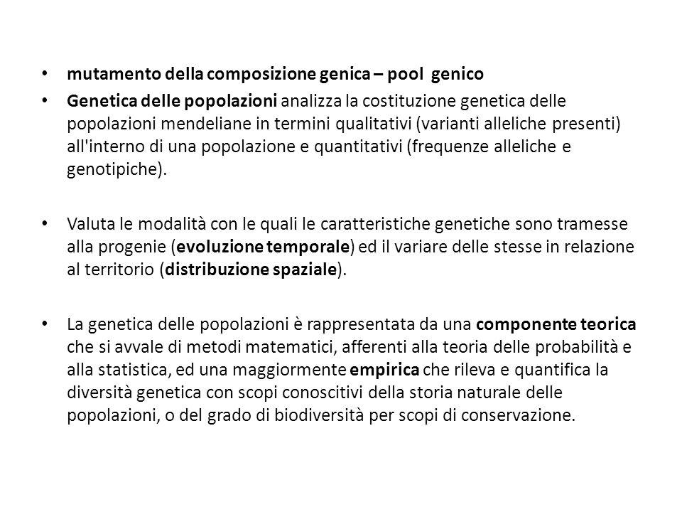 mutamento della composizione genica – pool genico Genetica delle popolazioni analizza la costituzione genetica delle popolazioni mendeliane in termini