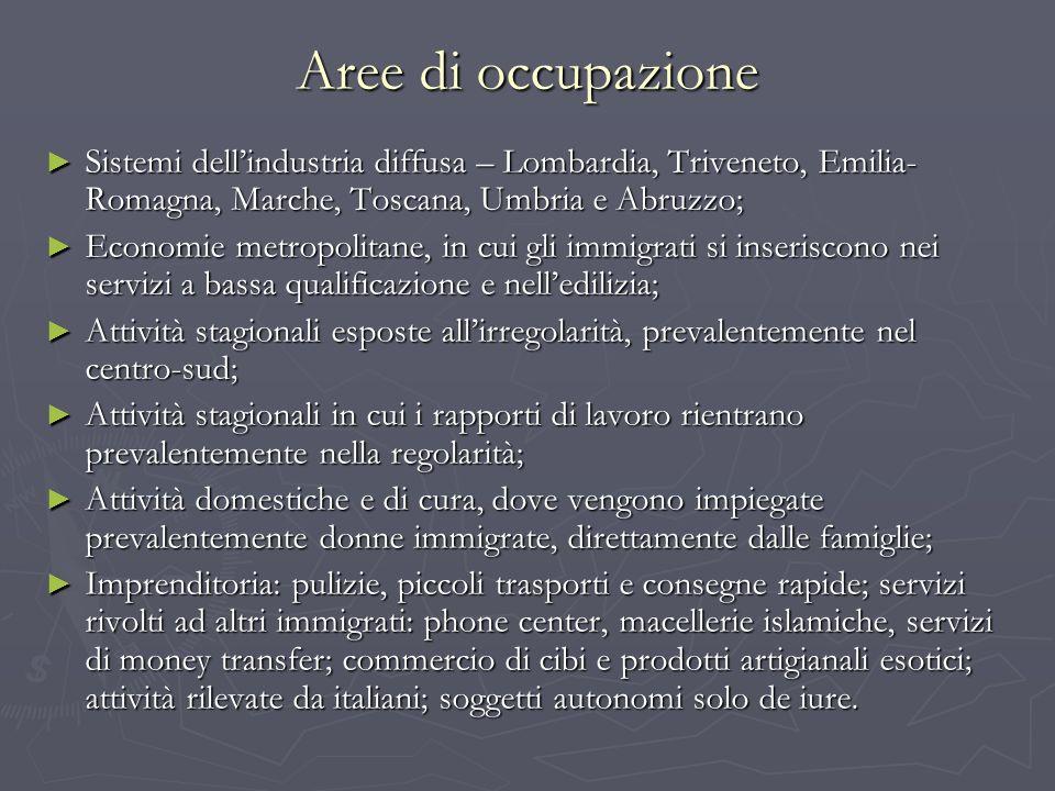 Aree di occupazione Sistemi dellindustria diffusa – Lombardia, Triveneto, Emilia- Romagna, Marche, Toscana, Umbria e Abruzzo; Sistemi dellindustria di