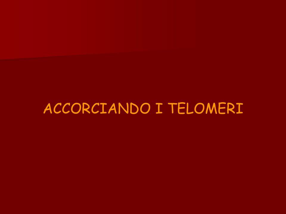 ACCORCIANDO I TELOMERI