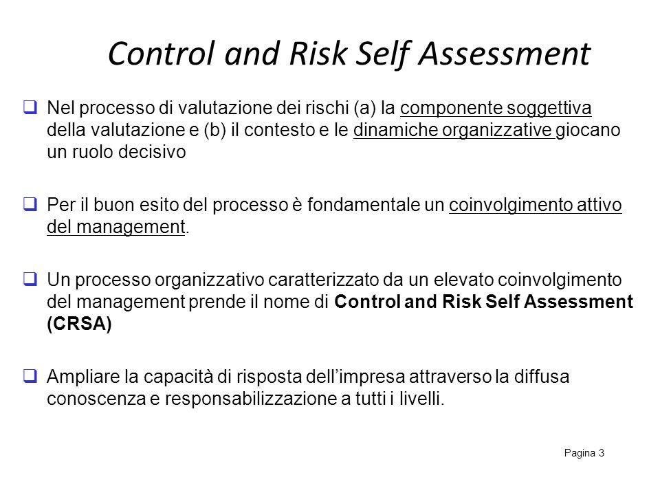 Control and Risk Self Assessment Pagina 3 Nel processo di valutazione dei rischi (a) la componente soggettiva della valutazione e (b) il contesto e le