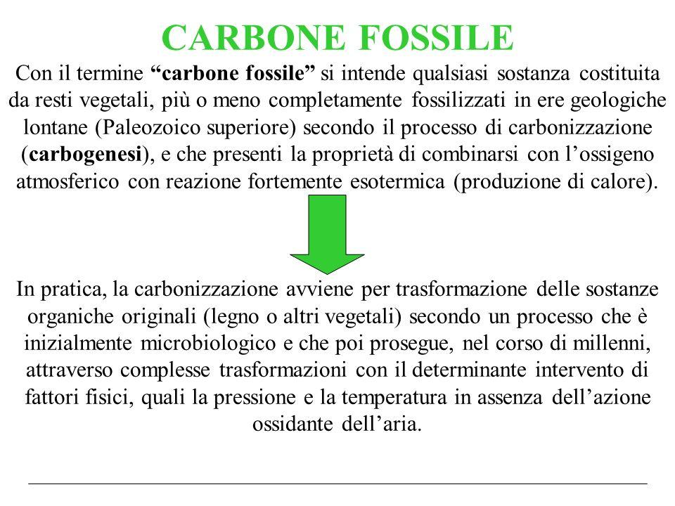 CARBONE FOSSILE Con il termine carbone fossile si intende qualsiasi sostanza costituita da resti vegetali, più o meno completamente fossilizzati in er
