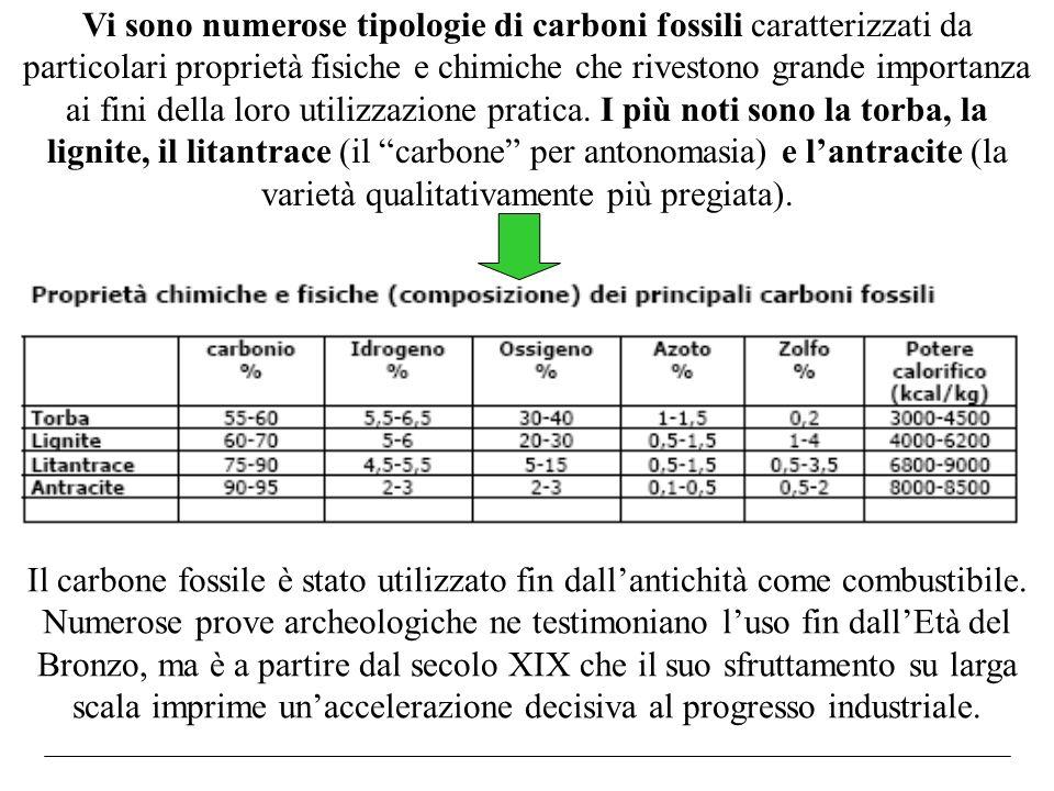 Vi sono numerose tipologie di carboni fossili caratterizzati da particolari proprietà fisiche e chimiche che rivestono grande importanza ai fini della