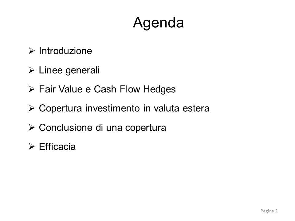 Introduzione Linee generali Fair Value e Cash Flow Hedges Copertura investimento in valuta estera Conclusione di una copertura Efficacia Agenda Pagina