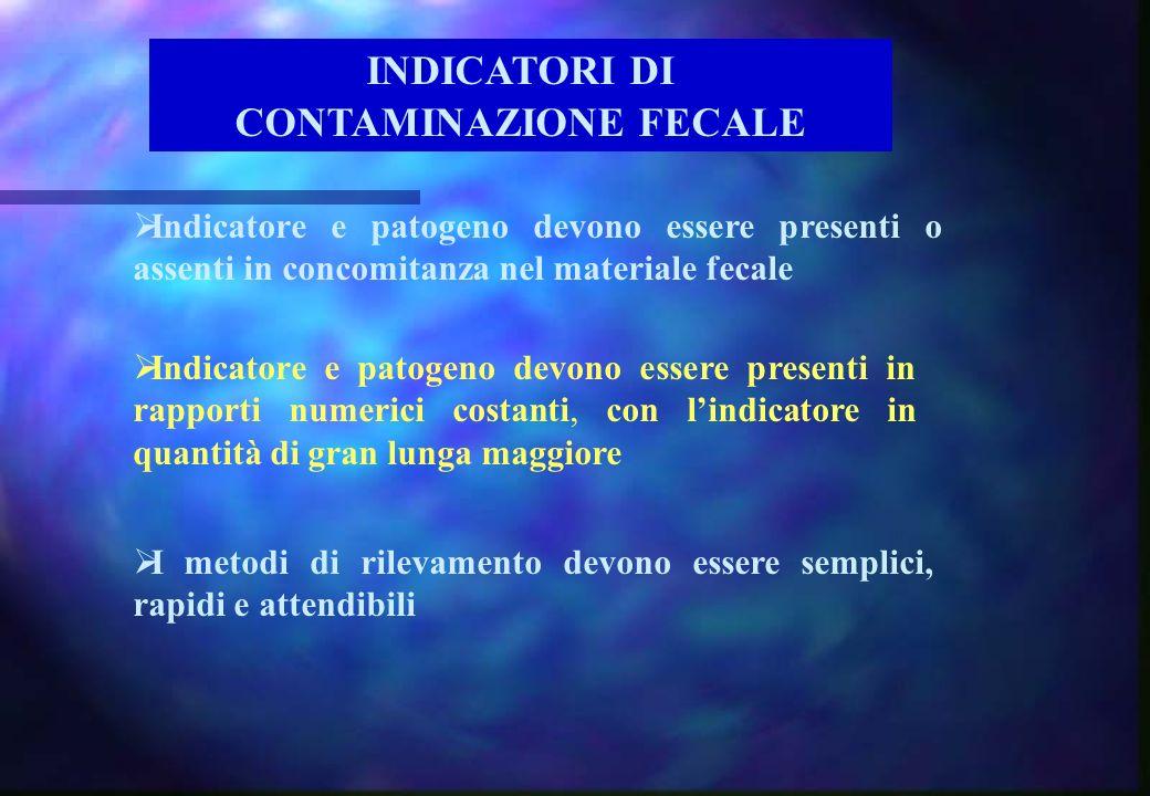 Indicatore e patogeno devono essere presenti in rapporti numerici costanti, con lindicatore in quantità di gran lunga maggiore Indicatore e patogeno d