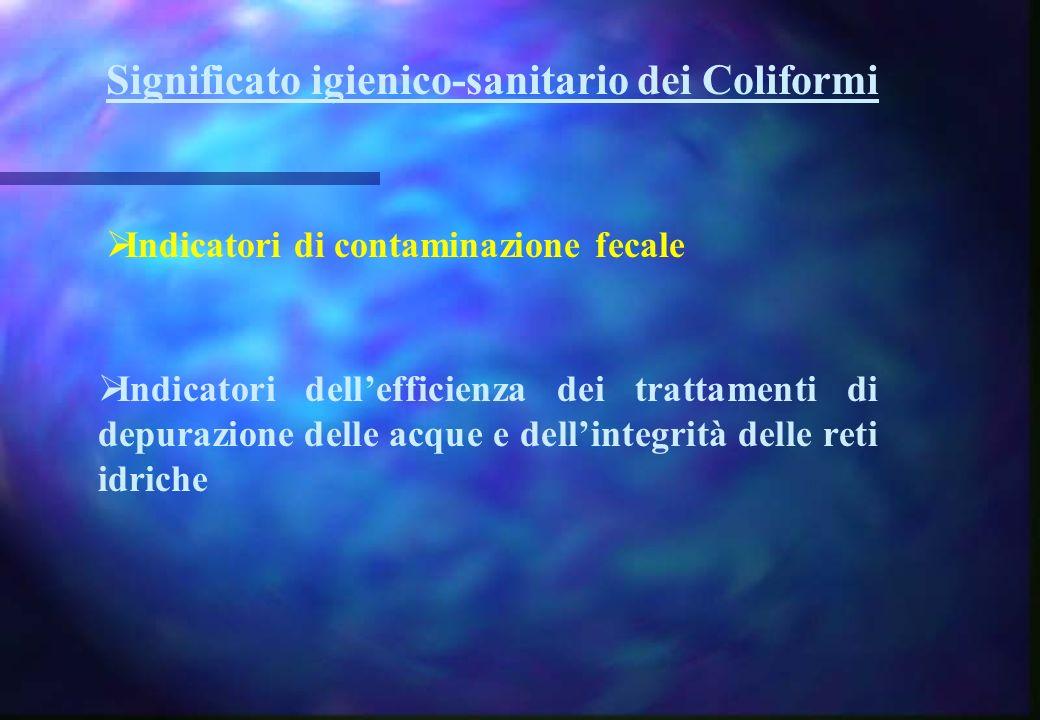 Significato igienico-sanitario dei Coliformi Indicatori di contaminazione fecale Indicatori dellefficienza dei trattamenti di depurazione delle acque