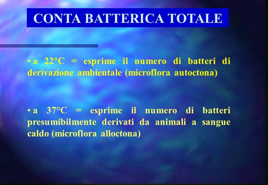 CONTA BATTERICA TOTALE a 37°C = esprime il numero di batteri presumibilmente derivati da animali a sangue caldo (microflora alloctona) a 22°C = esprim