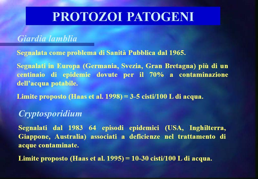 PROTOZOI PATOGENI Giardia lamblia Segnalata come problema di Sanità Pubblica dal 1965. Segnalati in Europa (Germania, Svezia, Gran Bretagna) più di un