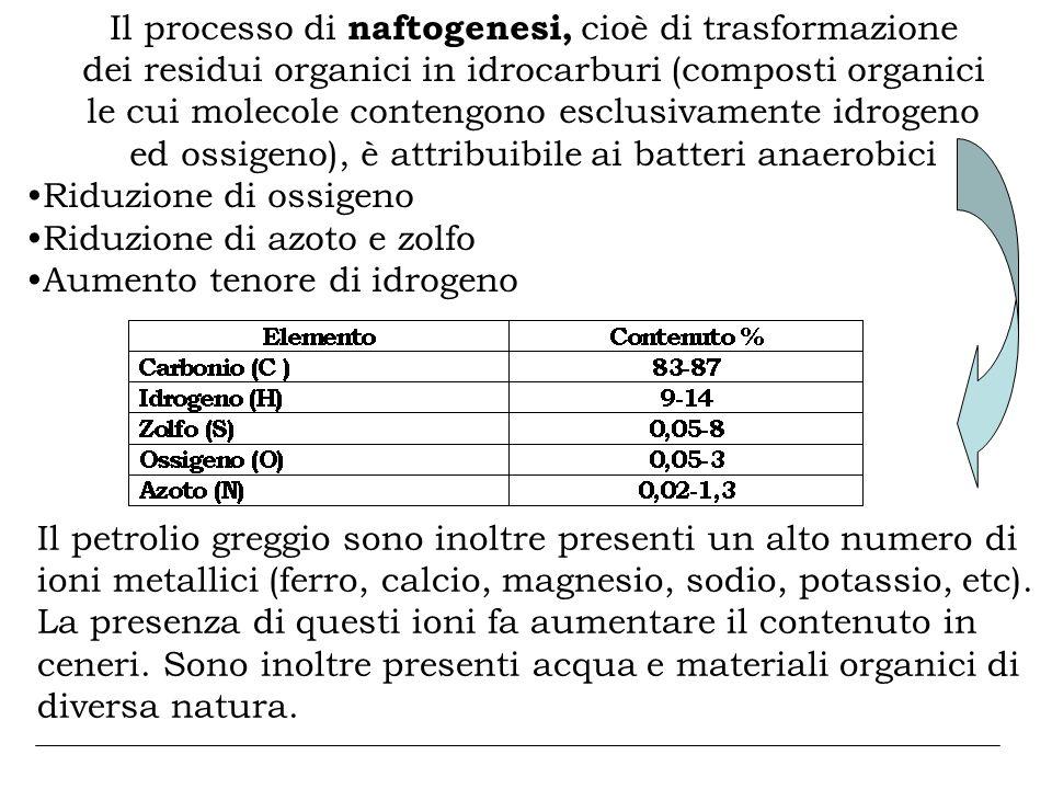 Il processo di naftogenesi, cioè di trasformazione dei residui organici in idrocarburi (composti organici le cui molecole contengono esclusivamente id