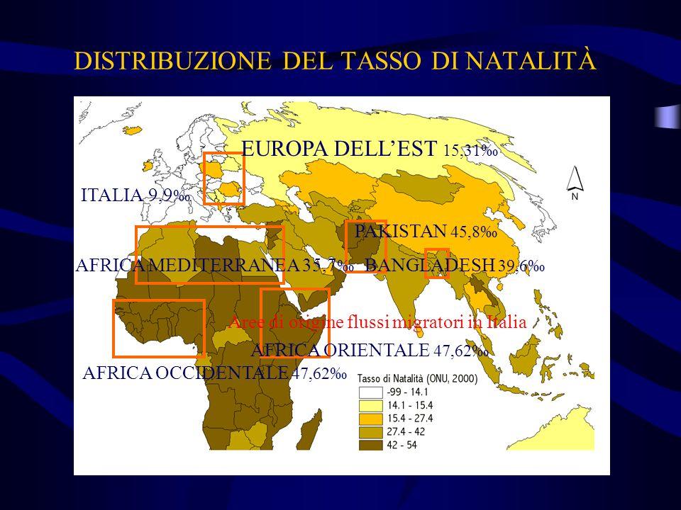 DISTRIBUZIONE DEL TASSO DI NATALITÀ Aree di origine flussi migratori in Italia ITALIA 9,9 EUROPA DELLEST 15,31 PAKISTAN 45,8 BANGLADESH 39,6 AFRICA OR