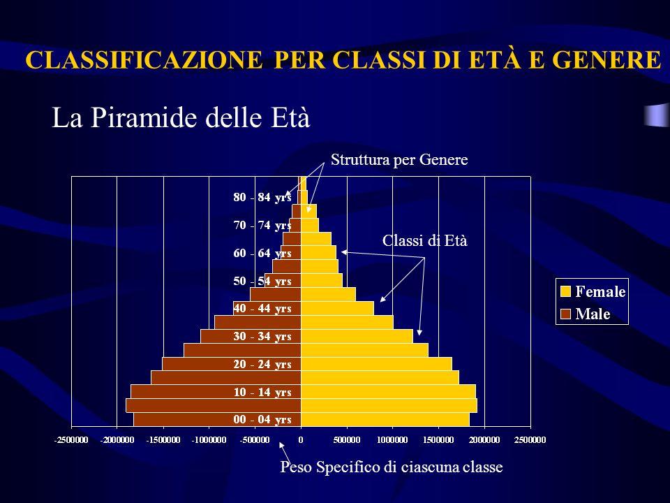 CLASSIFICAZIONE PER CLASSI DI ETÀ E GENERE La Piramide delle Età Classi di Età Struttura per Genere Peso Specifico di ciascuna classe