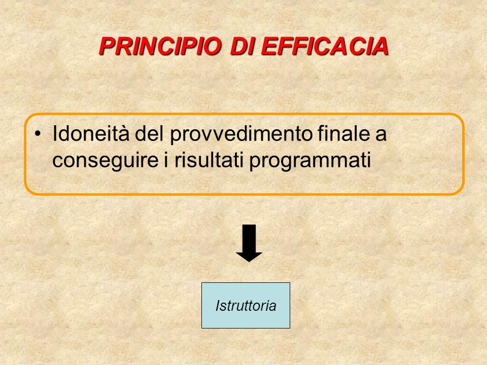 PRINCIPIO DI PUBBLICITA Lattività amministrativa deve essere aperta alla partecipazione dei privati (destinatari del provvedimento finale; portatori di interessi qualificati) Comunicazione di avvio del procedimento Responsabile del procedimento Accesso