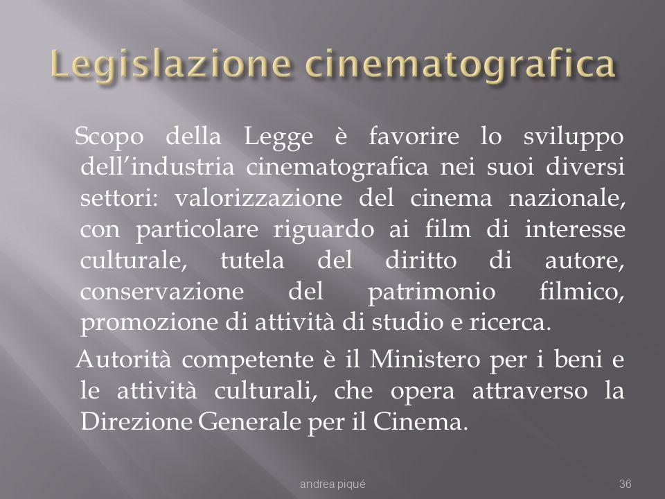 Scopo della Legge è favorire lo sviluppo dellindustria cinematografica nei suoi diversi settori: valorizzazione del cinema nazionale, con particolare riguardo ai film di interesse culturale, tutela del diritto di autore, conservazione del patrimonio filmico, promozione di attività di studio e ricerca.
