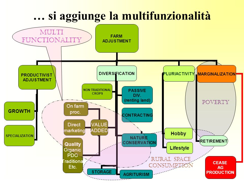 … si aggiunge la multifunzionalità NATURE CONSERVATION Rural space consumption poverty MULTI FUNCTIONALITY