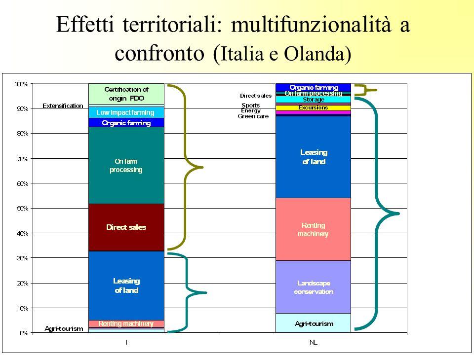 Effetti territoriali: multifunzionalità a confronto ( Italia e Olanda)
