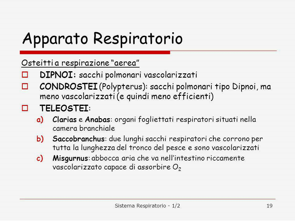 Sistema Respiratorio - 1/219 Apparato Respiratorio Osteitti a respirazione aerea DIPNOI: sacchi polmonari vascolarizzati CONDROSTEI (Polypterus): sacchi polmonari tipo Dipnoi, ma meno vascolarizzati (e quindi meno efficienti) TELEOSTEI: a)Clarias e Anabas: organi fogliettati respiratori situati nella camera branchiale b)Saccobranchus: due lunghi sacchi respiratori che corrono per tutta la lunghezza del tronco del pesce e sono vascolarizzati c)Misgurnus: abbocca aria che va nellintestino riccamente vascolarizzato capace di assorbire O 2
