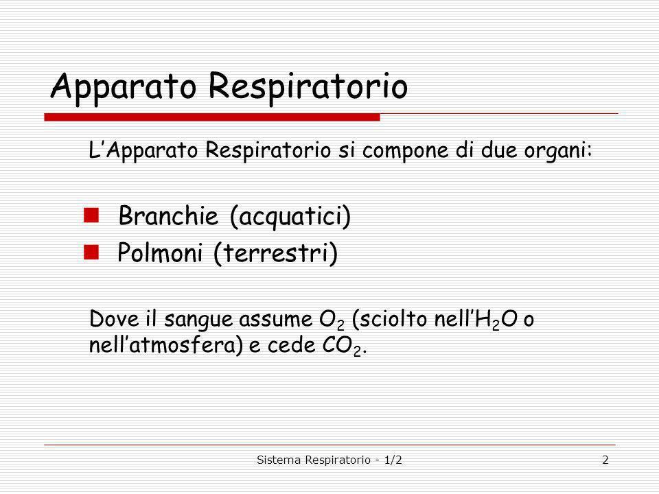 Sistema Respiratorio - 1/22 Apparato Respiratorio LApparato Respiratorio si compone di due organi: Branchie (acquatici) Polmoni (terrestri) Dove il sangue assume O 2 (sciolto nellH 2 O o nellatmosfera) e cede CO 2.