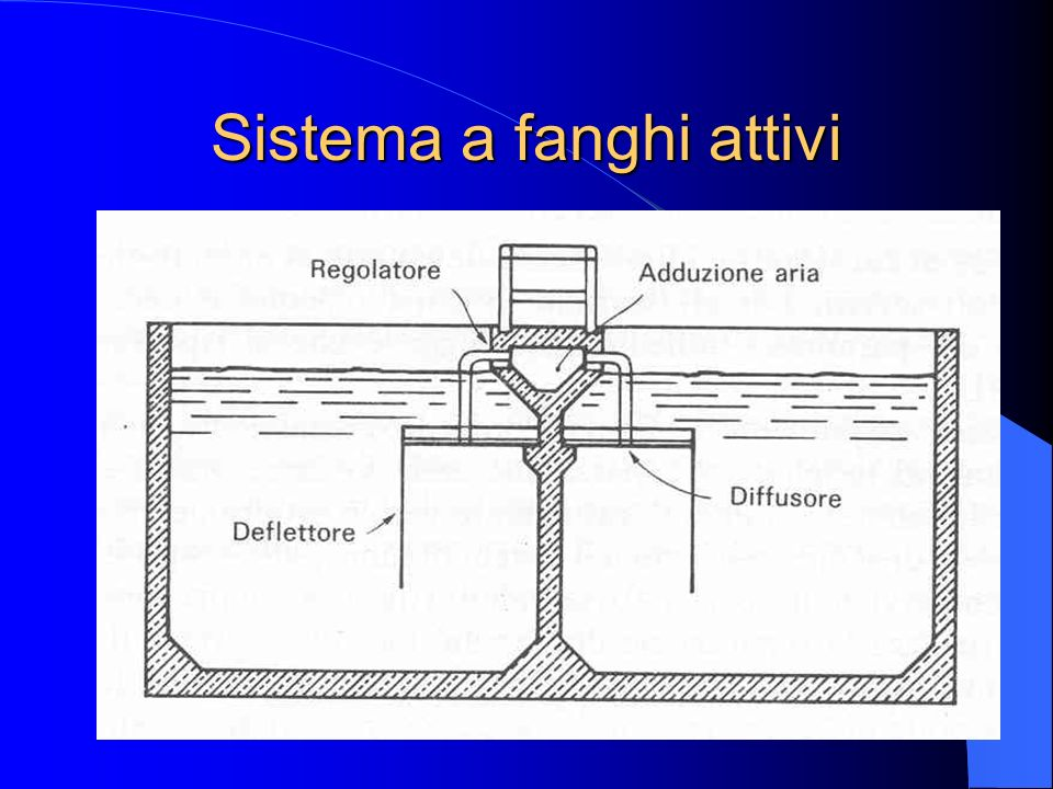 Sistema a fanghi attivi