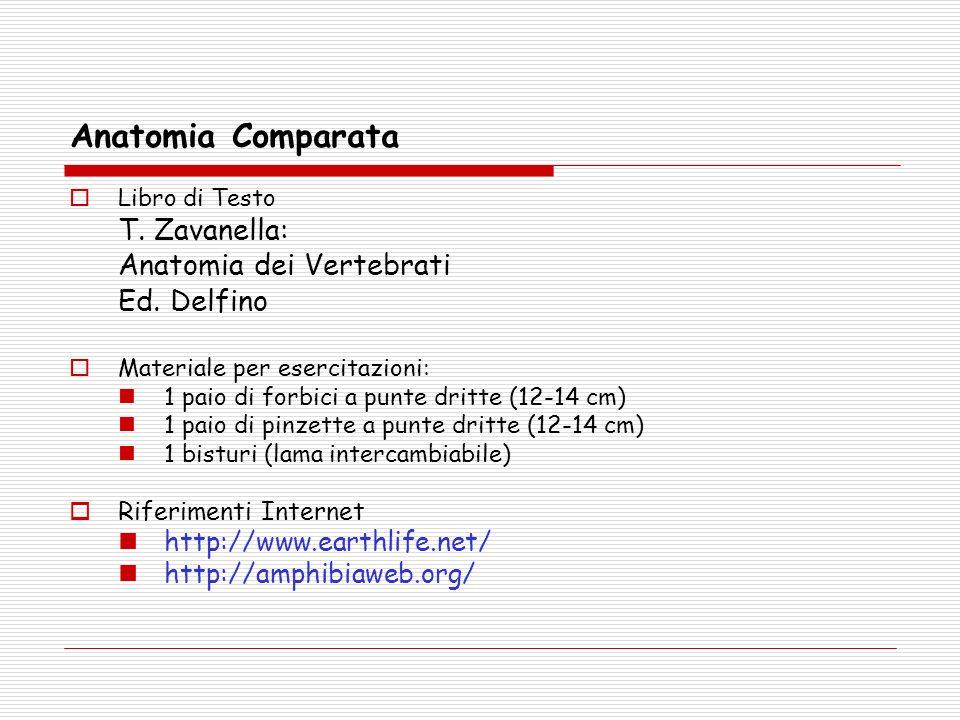 Libro di Testo T. Zavanella: Anatomia dei Vertebrati Ed. Delfino Materiale per esercitazioni: 1 paio di forbici a punte dritte (12-14 cm) 1 paio di pi