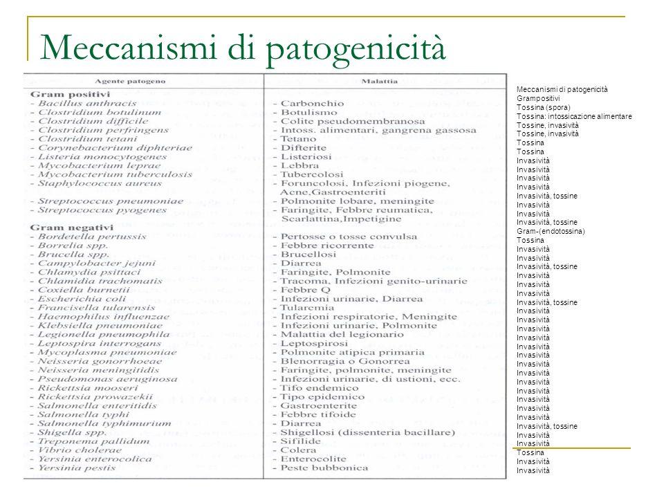 Meccanismi di patogenicità Grampositivi Tossina (spora) Tossina: intossicazione alimentare Tossine, invasività Tossina Invasività Invasività, tossine