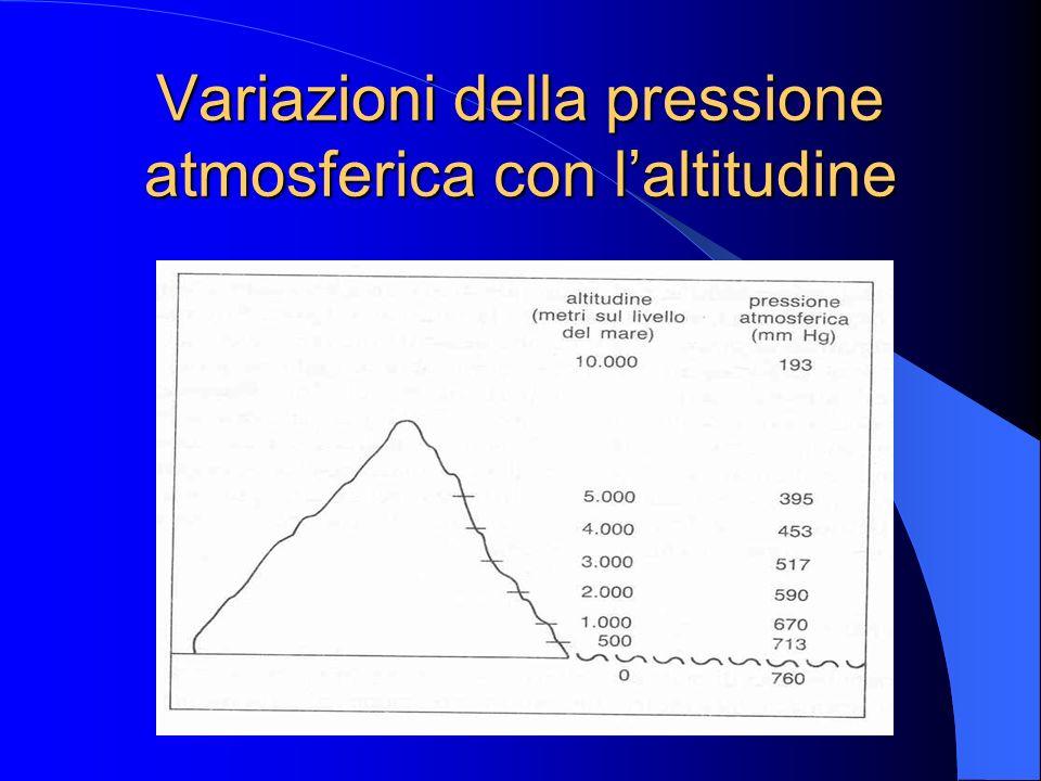Clima locale Marino Continentale Montano Desertico
