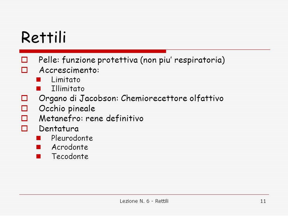 Lezione N. 6 - Rettili12