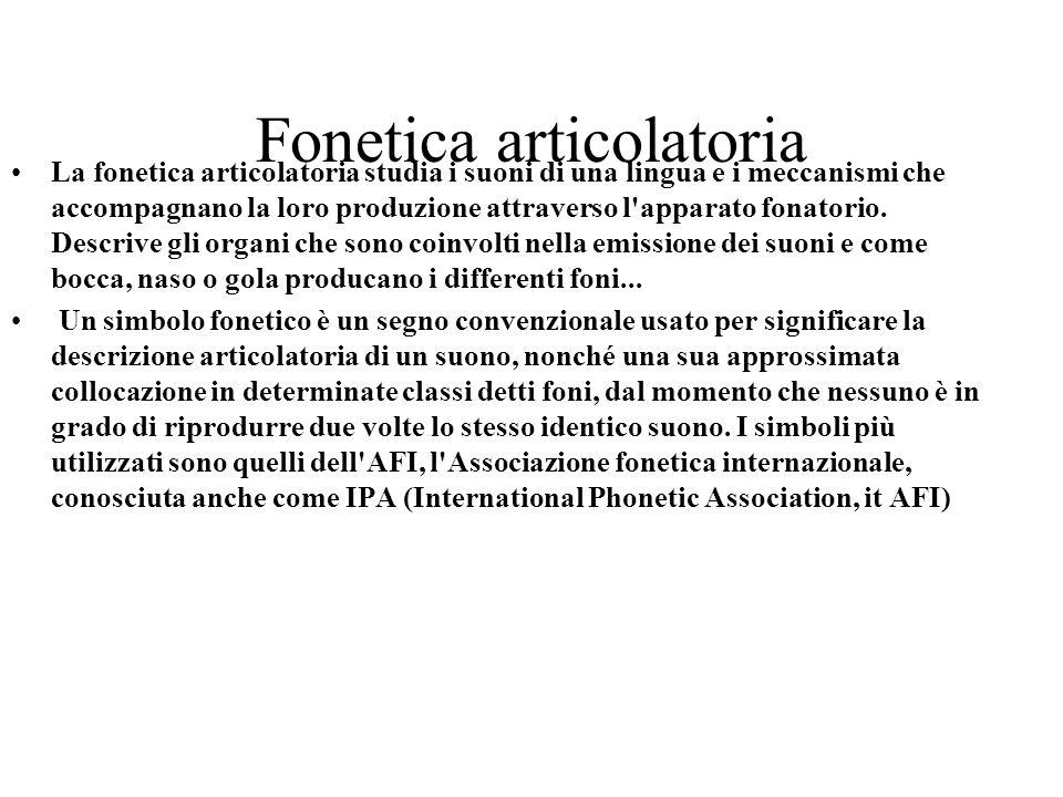 Fonetica articolatoria La fonetica articolatoria studia i suoni di una lingua e i meccanismi che accompagnano la loro produzione attraverso l'apparato