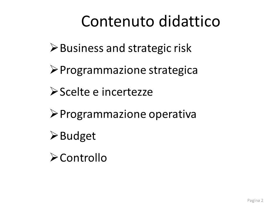 Business and strategic risk Programmazione strategica Scelte e incertezze Programmazione operativa Budget Controllo Contenuto didattico Pagina 2