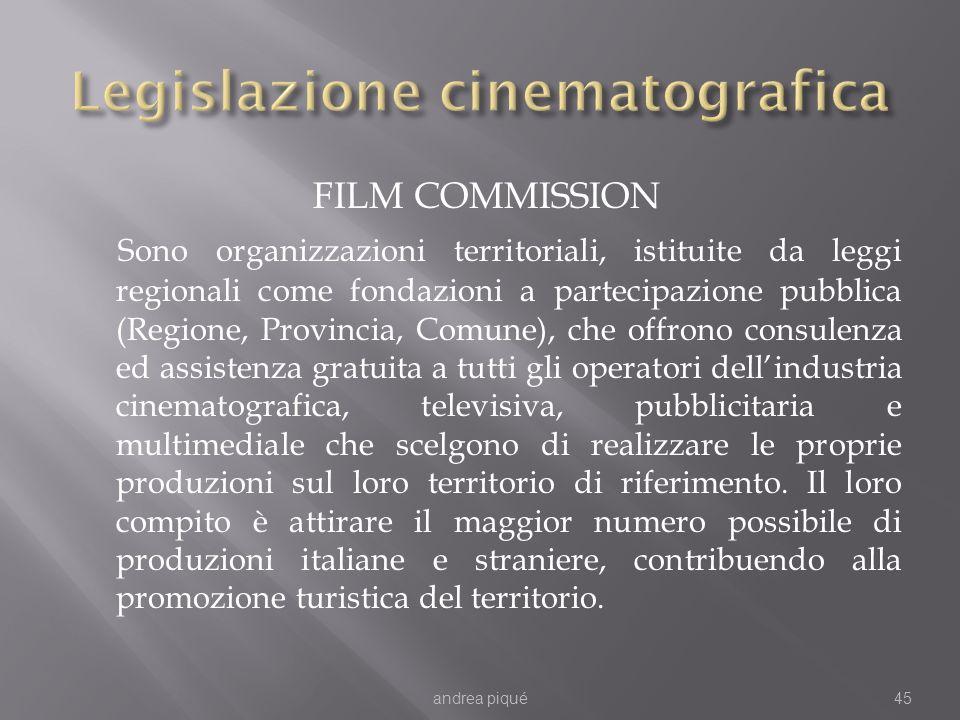 FILM COMMISSION Sono organizzazioni territoriali, istituite da leggi regionali come fondazioni a partecipazione pubblica (Regione, Provincia, Comune),