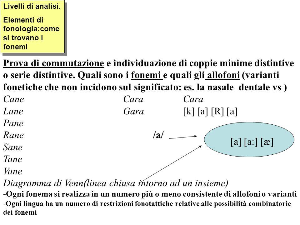 Livelli di analisi. Elementi di fonologia:come si trovano i fonemi Livelli di analisi. Elementi di fonologia:come si trovano i fonemi Prova di commuta