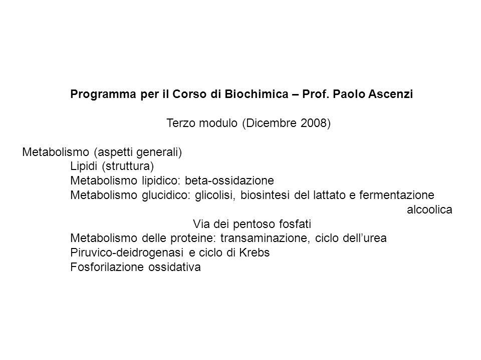 Programma per il Corso di Biochimica – Prof. Paolo Ascenzi Terzo modulo (Dicembre 2008) Metabolismo (aspetti generali) Lipidi (struttura) Metabolismo