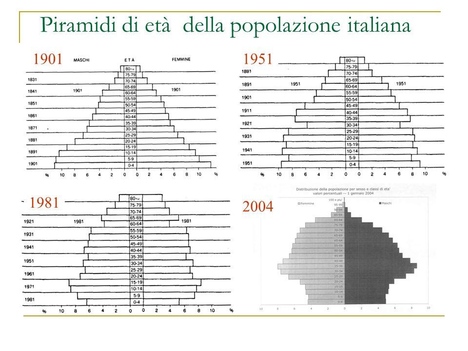 Piramidi di età della popolazione italiana 1981 19511901 2004