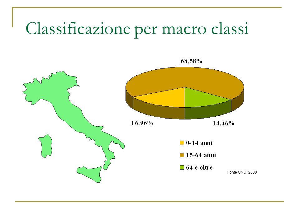 Classificazione per macro classi Fonte ONU, 2000