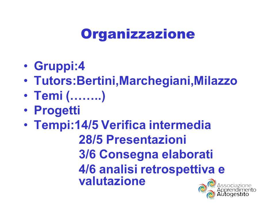 Organizzazione Gruppi:4 Tutors:Bertini,Marchegiani,Milazzo Temi (……..) Progetti Tempi:14/5 Verifica intermedia 28/5 Presentazioni 3/6 Consegna elaborati 4/6 analisi retrospettiva e valutazione