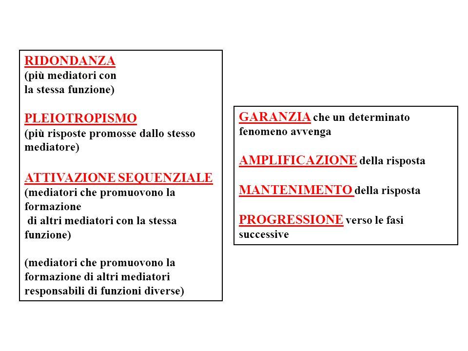 RIDONDANZA (più mediatori con la stessa funzione) PLEIOTROPISMO (più risposte promosse dallo stesso mediatore) ATTIVAZIONE SEQUENZIALE (mediatori che