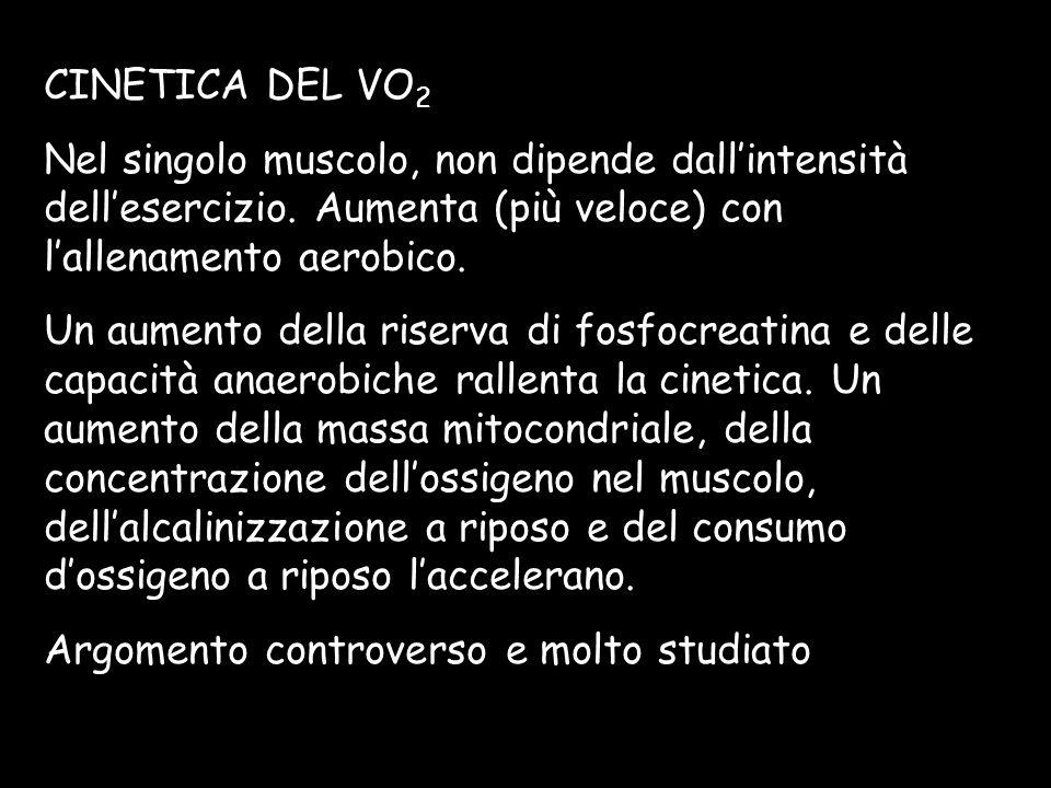 CINETICA DEL VO 2 Nel singolo muscolo, non dipende dallintensità dellesercizio. Aumenta (più veloce) con lallenamento aerobico. Un aumento della riser