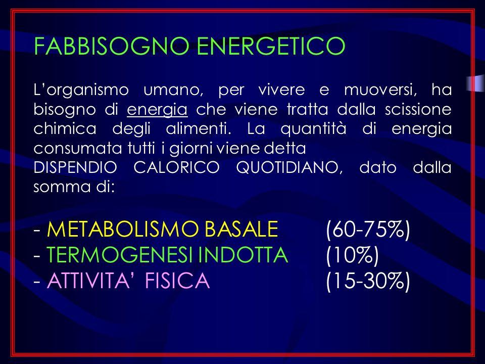 METABOLISMO BASALE: Consumo energetico minimo di base, necessario per sostenere le funzioni vitali di un organismo a riposo.