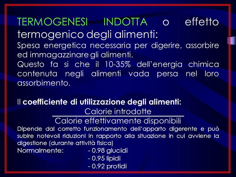 TERMOGENESI INDOTTA o effetto termogenico degli alimenti: Spesa energetica necessaria per digerire, assorbire ed immagazzinare gli alimenti. Questo fa