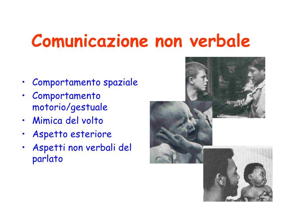 16 Comunicazione non verbale Comportamento spaziale Comportamento motorio/gestuale Mimica del volto Aspetto esteriore Aspetti non verbali del parlato