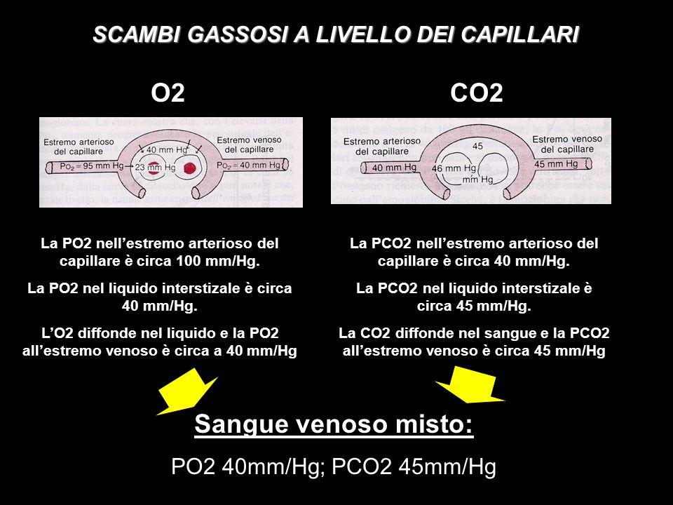 SCAMBI GASSOSI A LIVELLO DEI CAPILLARI O2CO2 La PO2 nellestremo arterioso del capillare è circa 100 mm/Hg. La PO2 nel liquido interstizale è circa 40