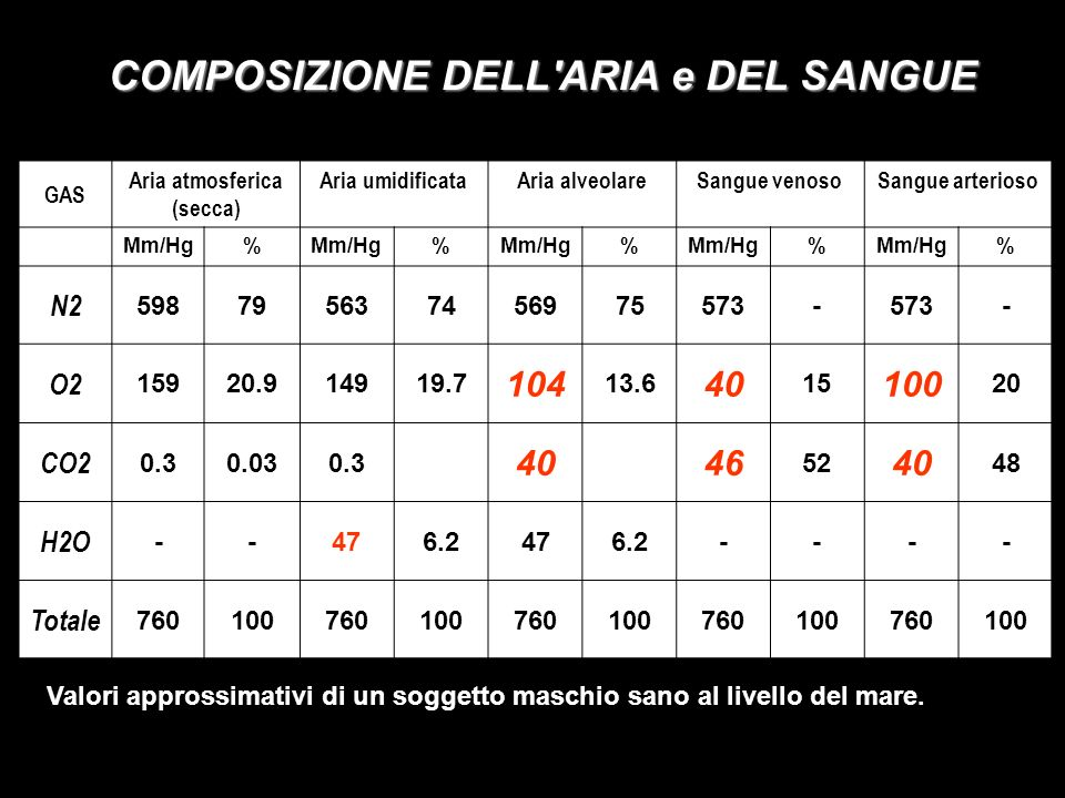 COMPOSIZIONE DELL'ARIA e DEL SANGUE GAS Aria atmosferica (secca) Aria umidificataAria alveolareSangue venosoSangue arterioso Mm/Hg% % % % % N2 5987956